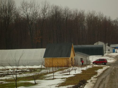 Nu Way Farm on a rainy March day