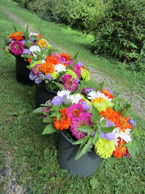 Bouquets from Crighton Farm