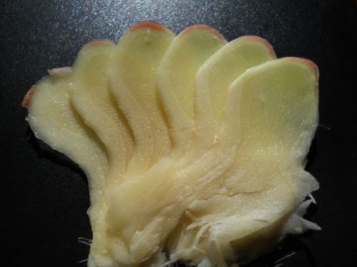 Sliced ginger using mandolin. Sliced 'with' or parallel to rhizome growth