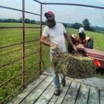 Hay making time