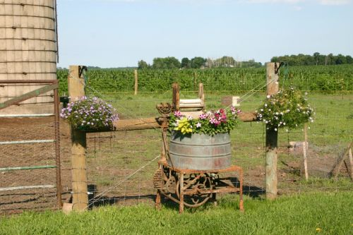 planters by the barn