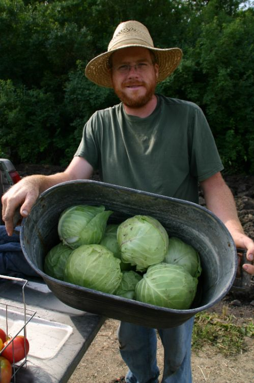 josh and the cabbages