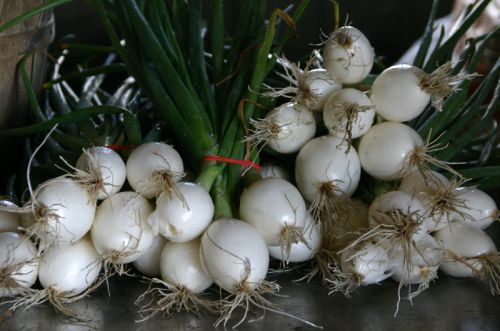 white sweet onions