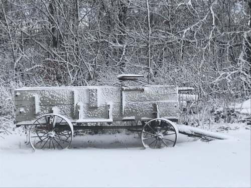 Snowy farm wagon
