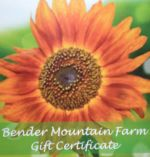 BMF Gift Certificate
