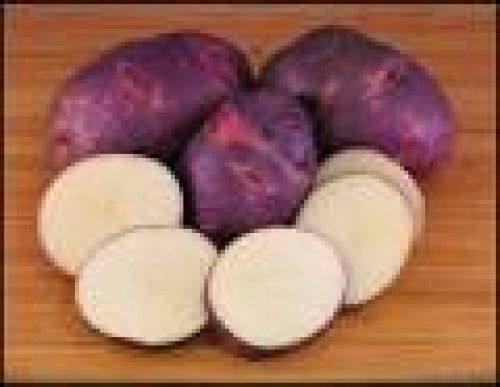 SOLD OUT - Potato - Purple Viking