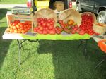 Tomato season at market