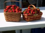 2 baskets of berries