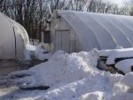 Snow pile in front of main greenhouse.  Wish we could save it for a hot summer day!
