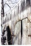 Icicles on Wagonshed