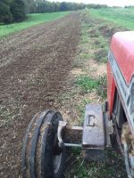 Tilling Tomatoes for Cover Crop