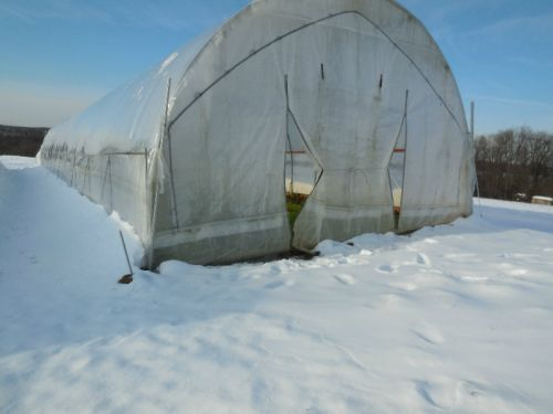 Airing Hoophouse