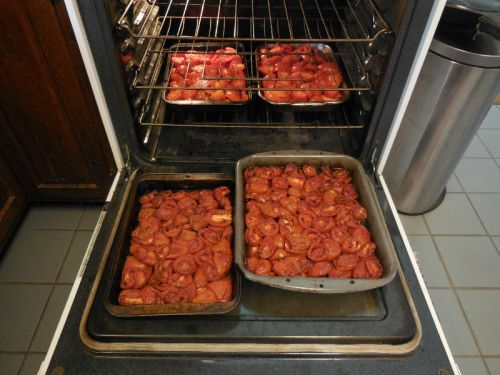 Oven Roasting Tomatoes