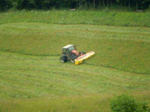 Mowing Hay Alps