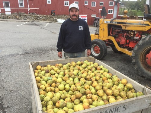 Juan Pablo and Pears at the Cider Press
