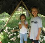 Grandchildren and chickens on pasture.