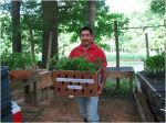 Erasmo with tomato plants