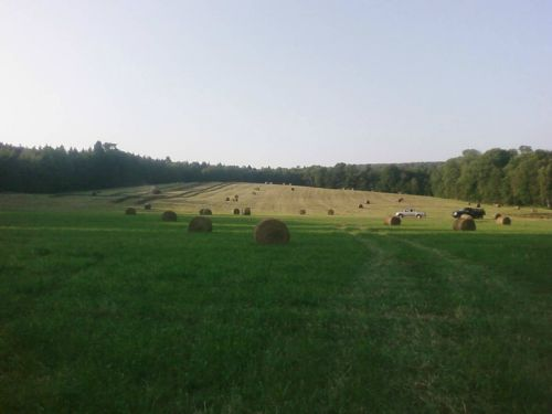 round bales in Cooper Meadow