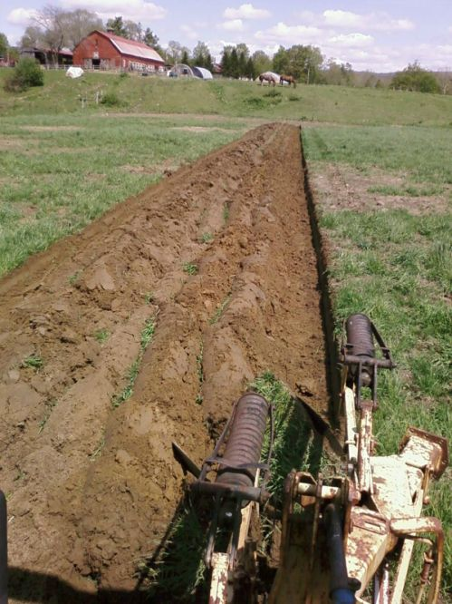 plowing the floodplain