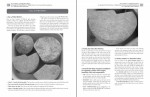 SUCCESSFUL CHEESEMAKING™ book, pages 8, Merryl Winstein