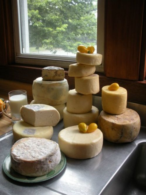 Make all kinds of cheese at a class with Merryl Winstein, St. Louis, MO
