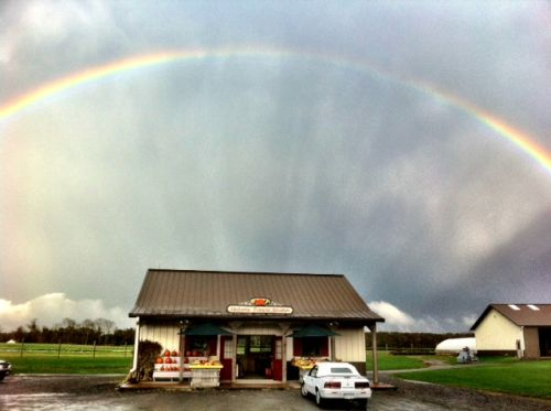 Rainbow over the Farm stand