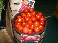 Tomatoes -Canning
