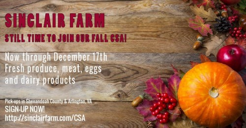 Fall CSA Sign Up