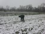 Harvesting asparagus May 2nd, 2013 in the snow!