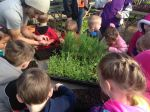 Head start kids learn to plant seeds