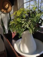 Herbs make a nice arrangement on our sun porch