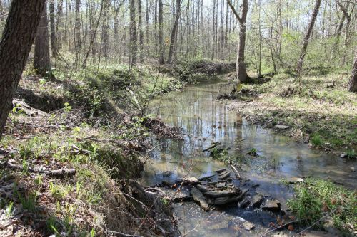 Clay Lick Creek Runs by Farm