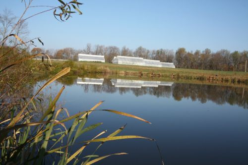 High Tunnels over Pond