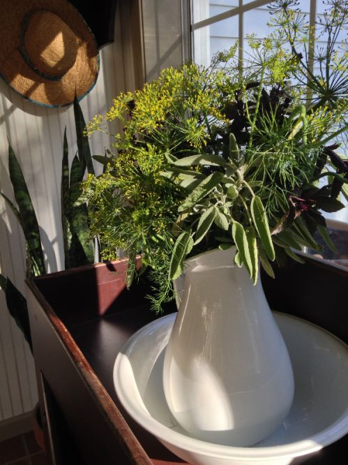 Winter herbs on porch