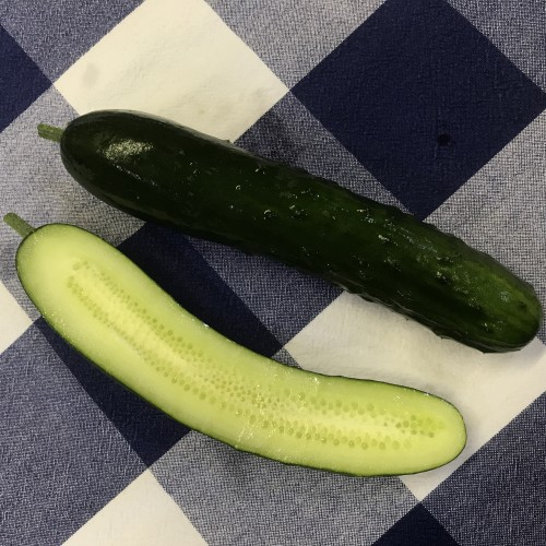 "Cucumber ""Seedless"" Slicer"