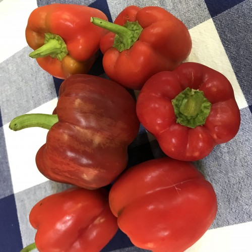Sweet Red Bell Peppers