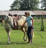 Hope and Honey Bug Paint/Palomino Quarter Horse