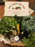 CSA Share Week 1: Lettuce, Kale, Radishes, Cucumbers, Zucchini, Stevia-Herb Plant, Peppermint-Herb Plant, Honey, Maple Syrup, Raspberry Jam