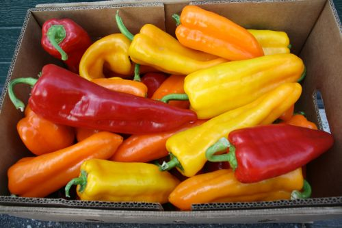 Sweet Peppers