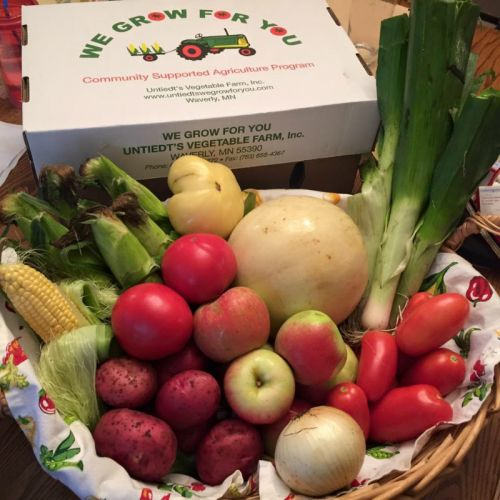 CSA Week 10: Sweet Corn, Honeydew Melon, potatoes, leeks, heirloom tomato, slicing tomatoes, Roma tomatoes, onion, and Zestar! apples.