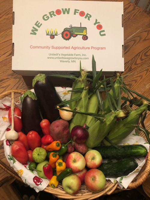 CSA Share Week 10: Sweet Corn, Roma Tomatoes, Tomatillos, Jalapenos, Onions, Cucumbers, Mini Bell Peppers, Eggplant, Potatoes, Garlic, Zestar! Apples