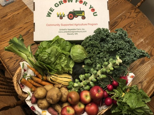 CSA Share Week 16: Haralson Apples, Romaine and Red Leaf Lettuce, Acorn Squash, Delicata Squash, Potatoes: A Mix Variety Pack, Kale, Radishes, Brussel Sprouts, Leeks, Carrots