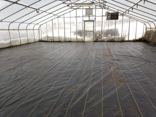 New Green House Floor