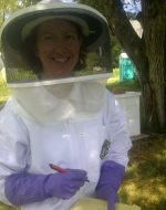 Checking on honey bees