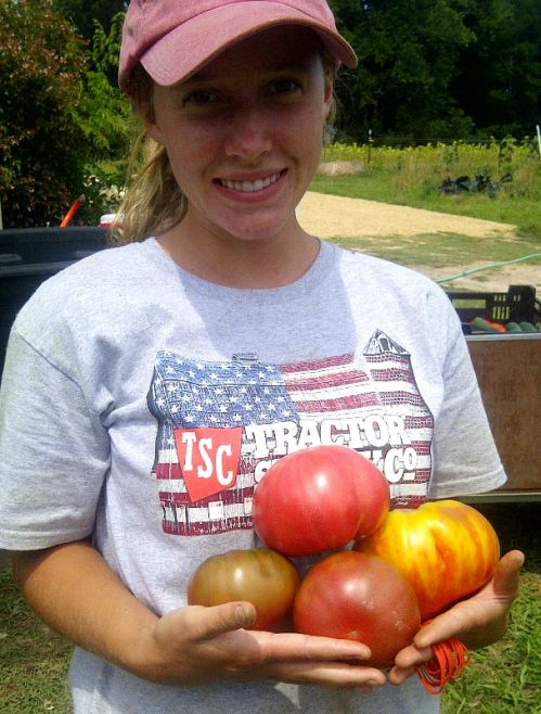 Summer & Heirloom Tomatoes