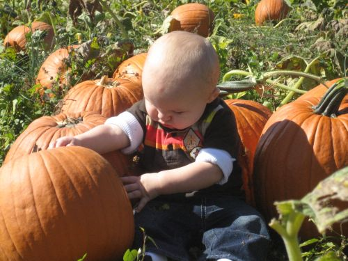 Leeland's first visit to the pumpkin patch
