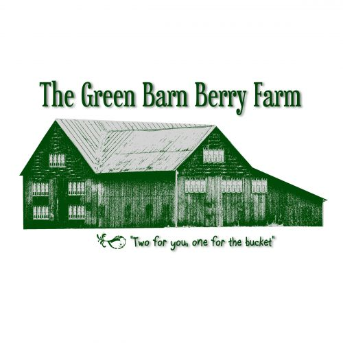 The Green Barn Berry Farm original logo created by our very own Betty O'Brien!