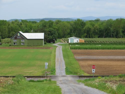 A view of The Green Barn Berry Farm as you enter from  Armstrong Road.