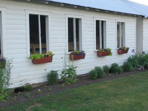 A look at the old chicken coups on our farm right after a fresh coat of paint and flower boxes were applied.