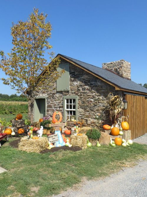 Our newly renovated store decorated for the fall season.  Many thanks to the talented Tim Pregent for all of his hardwork